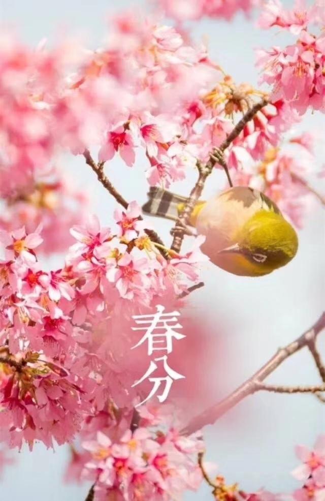 春分の日: sanmaoの暦歴徒然草